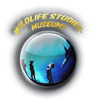 Wildlife studies museum.